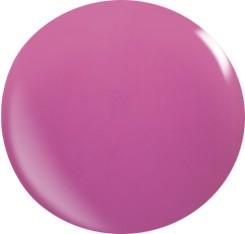 Gel colorato 017 / 22ml