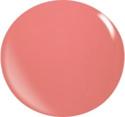 Gel couleur N025 / 22 ml