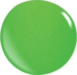 Colore Acryl Powder N031 / 56 gr.