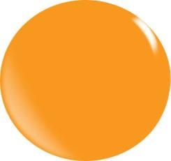 Color Acryl Powder N102/56 gr.