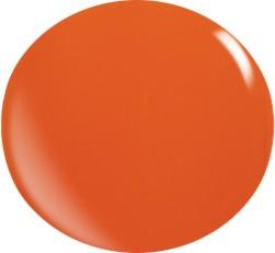Gel colorato N040 / 22 ml