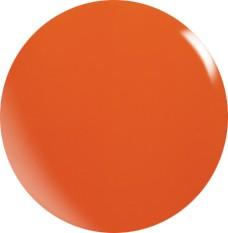 Gel colorato N073 / 22 ml