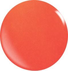 Couleur Poudre Acrylique N049 / 56 gr.